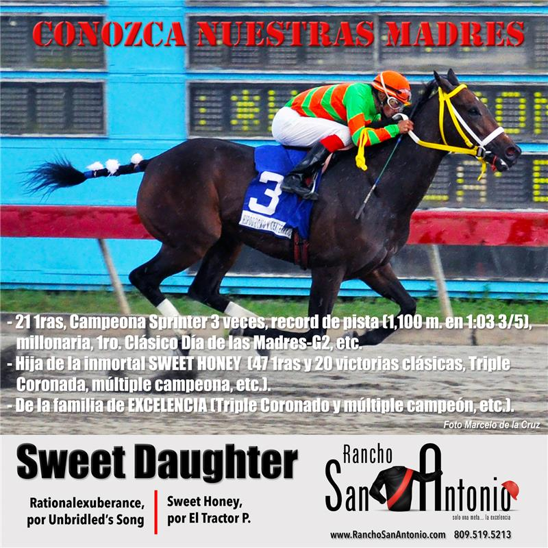 sweet-daughter-promo-conozca-madres-sweet-daughter